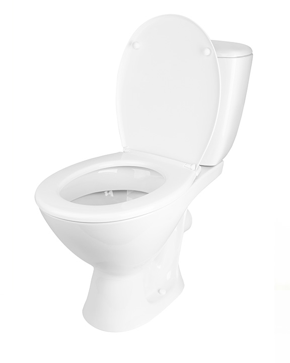toilet isolated on white background